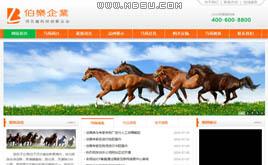 织梦dedecms橙色通用公司企业网站模板