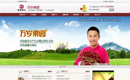 织梦红枣/干果等食品类公司企业产品展示网站模板