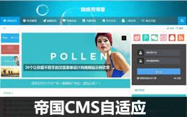 帝国CMS个人博客-技术博客-新闻博客模板(终端自适应)